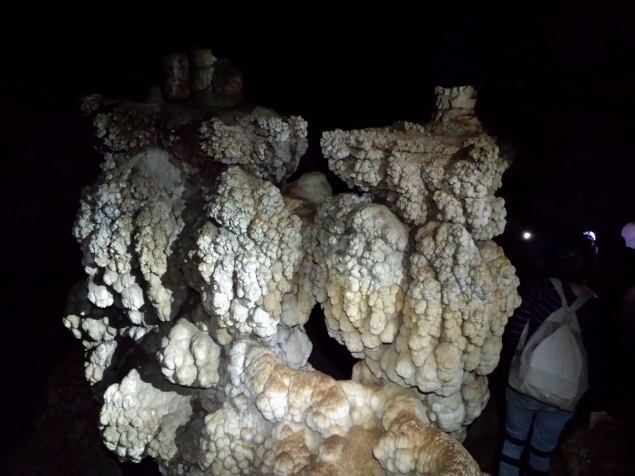 Subaqueous speleothems (formations that coalesced under water) at one of the many wild caves found within the Carlsbad Caverns National Park boundary. (Photo: Mag Kim)