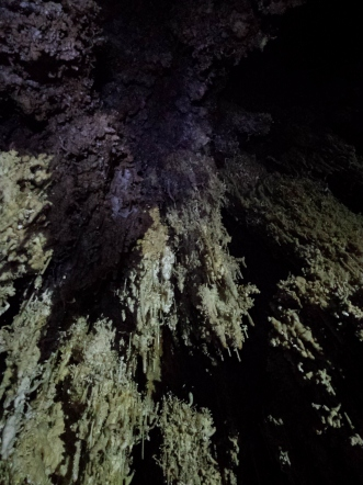 Massive, helictite-encrusted speleogens in Pink Panther Cave's Speleogasm Chamber. (Photo: Mag Kim)