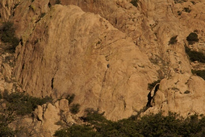 An anonymous climber on the Trad Rock wall in Cochise Stronghold. (Photo: Mag Kim)